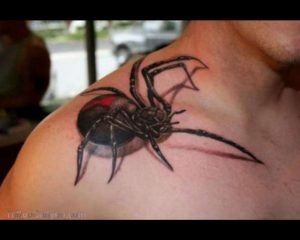 19415-3d-spider-tattoo-w630vitamin-ha-vitamin-tattoo-design-1280x1024