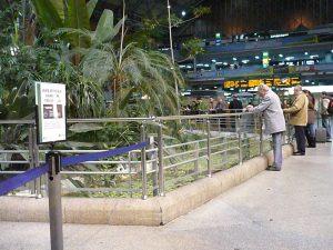 Botanical Garden Atocha