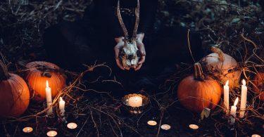 halloween setting pumpkins candles