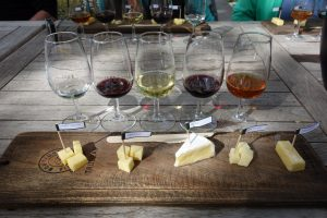 5 glasses of wine with 5 different cheeses