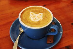 cup of coffee with cat in milk foam