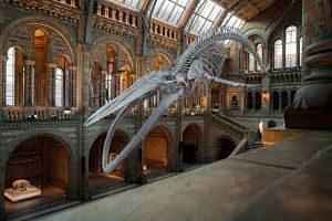inside science museum