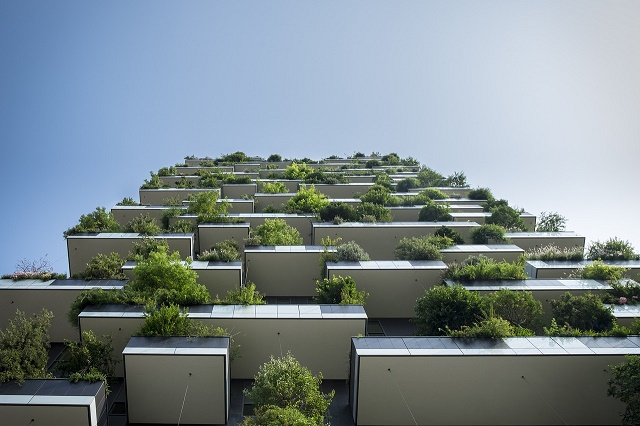 balconies with many plants