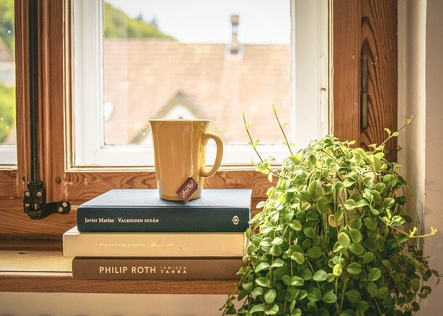 books, plant and coffee in window